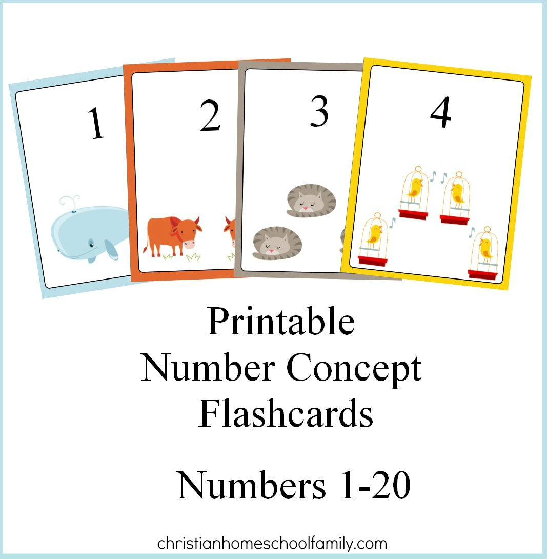 Worksheet Flash Cards Printable free printable number concept flashcards christian homeschool family family